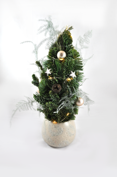 Kerstboom in pot