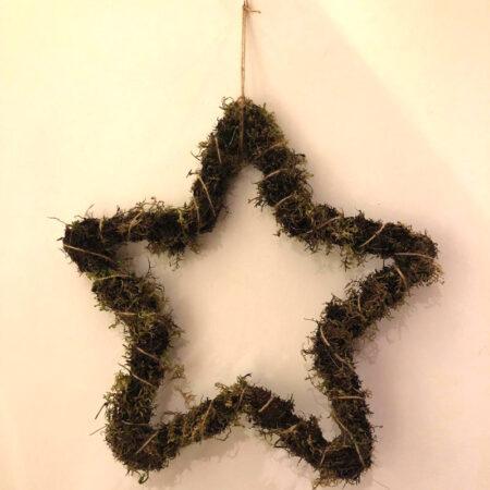 Kerstster mos