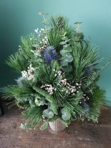 Kerstboompje in Pot
