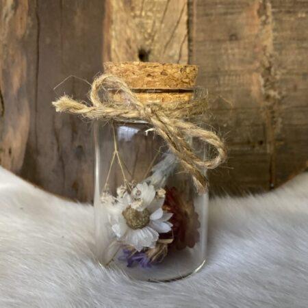Droogbloemen in glazen buis #31