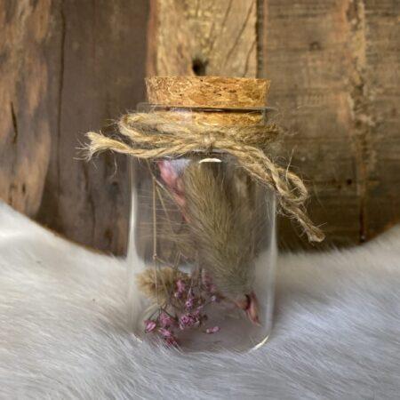 Droogbloemen in glazen buis #33